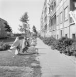 11619 Gemeenschappelijke tuin Zouteveenstraat. Overschie