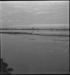 2747 Buizen in het water voor het opspuiten van een haventerrein bij de aanleg van de Eemhaven in de buurt van het ...