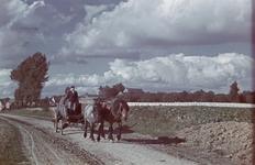 141 Vakantiefoto van de familie Boske, paard en wagen op het Belgische platte land.