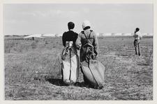 2 Deltavliegers kijken hoe een collega de lucht in gaat. Uit eens serie van 8 foto's over recreatie op de Maasvlakte.