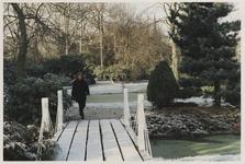 2000-158 Vrouw wandelt door licht besneeuwd Arboretum Trompenburg. Uit een serie van 23 foto's over het Arboretum ...