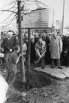 1967-449 Wethouder J. Worst plant de eerste boom voor de groenstreek aan de noordzijde van het Weena. Rechts staat ir. ...