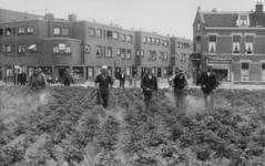 XXXIII-622-01 Op het Mijnsherenplein bij de Pleinweg worden de terreinen, die met aardappelen zijn bepoot, bespoten met ...