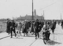 XXXIII-647-10-3 Het wegvoeren van NSB'ers door leden van de Nederlandsche Binnenlandsche Strijdkrachten (NBS) op de ...