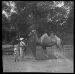 55 Familiefoto uit de collectie van de bakkerijfamilie Jansse. Alida Jansse-Visser (1900-2000) en zoon Jozua Jansse ...