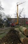 41 Onderhoudswerkzaamheden en het kappen van bomen in het plantsoen van de Noorderhavenkade.