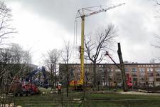 42 In het plantsoen aan de Noorderhavenkade worden bomen gerooid en gekapt.